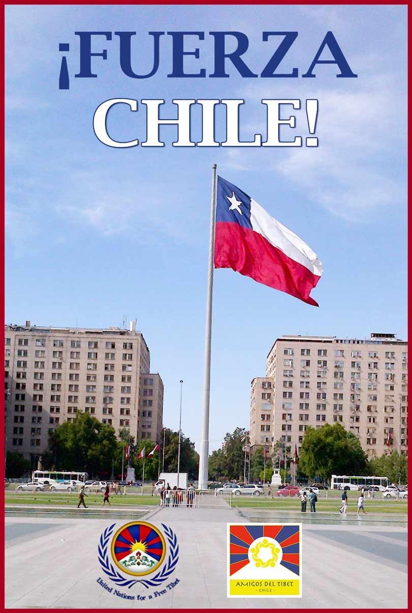 Fuerza_Chile_Terremoto